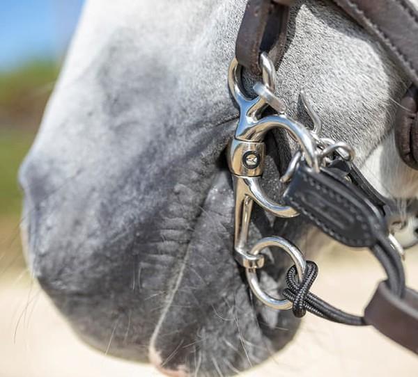 Sensogan Pelham Horse